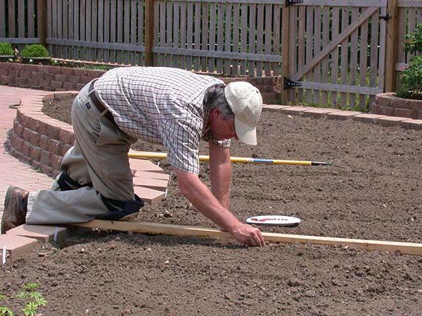 Ben-planting-peanuts-600×449