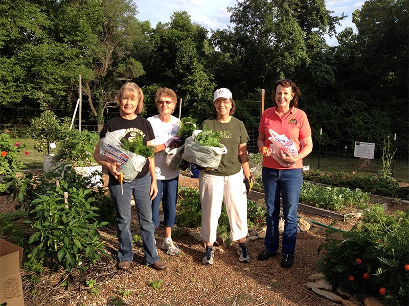 volunteers harvesters garden copy