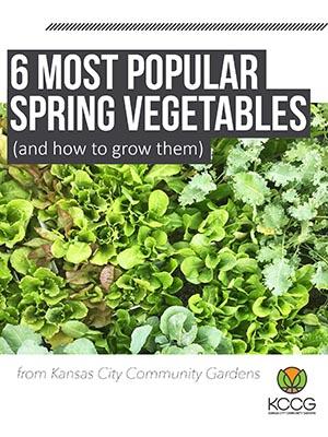 6 Most Popular Spring Vegetables