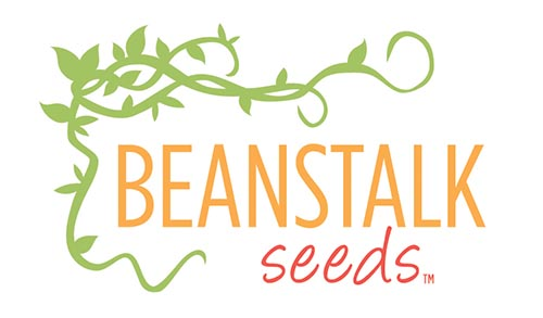 beanstalk_logo