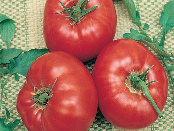 Whopper Tomato