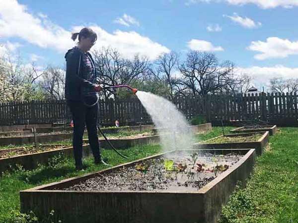 watering-guide