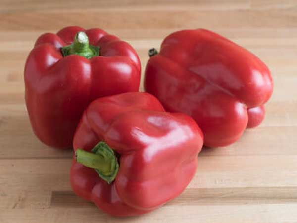 Red-Knight-Bell-Pepper