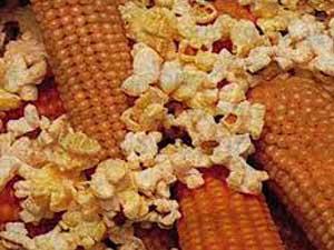 Robust-Popcorn