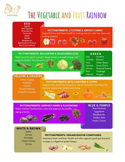 Phytonutrients: The Vegetable & Fruit Rainbow_2021