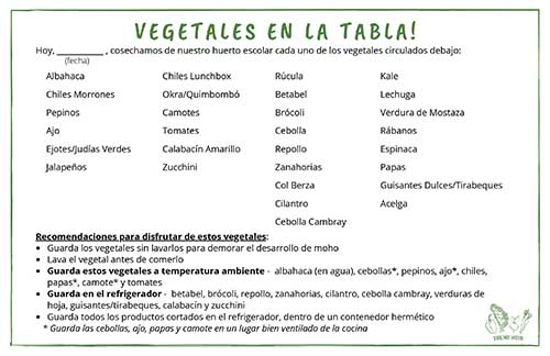 SPANISH VERSION_Veggies on Board