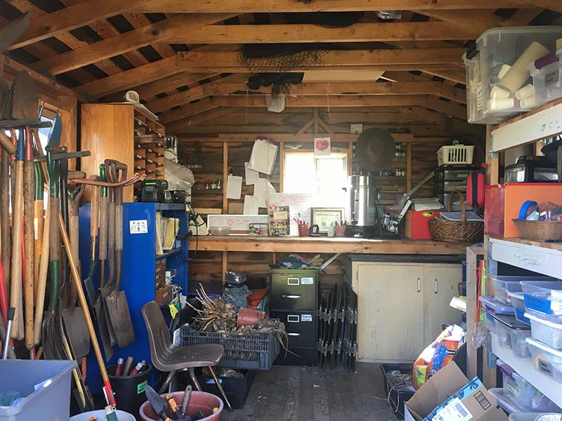 Shed with tools_WP