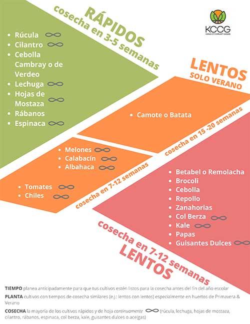 SPANISH VERSION_Fast & Slow Crops
