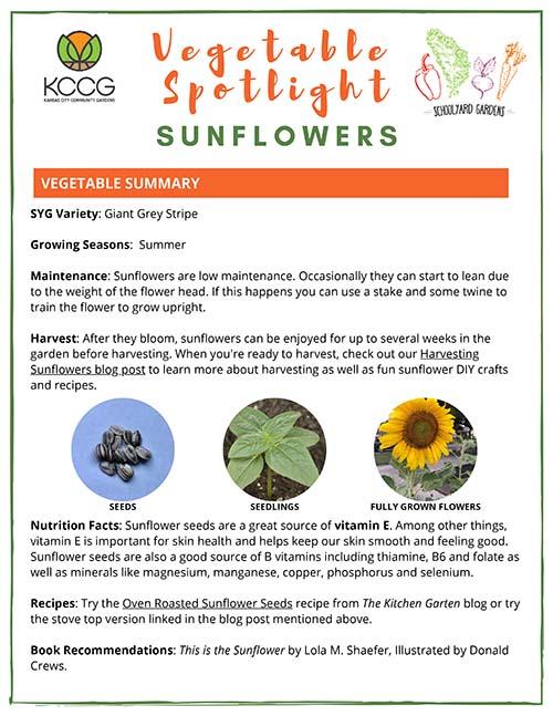 Sunflower-ELC
